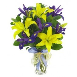Exclusive Deal: Exotic Flowers @Best Price