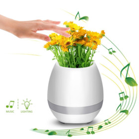 Buy Musical Flower Pot With Changing With Music Light At Best Price