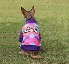 Get Upto 70% OFF On Jacket for Dogs