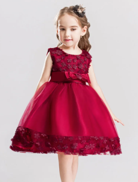 Get Flat 25% OFF on Party Wear Dress for Girls